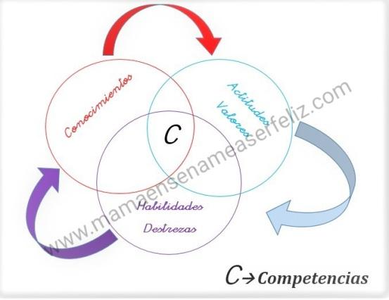 diagrama-competencias-con-marca-de-agua
